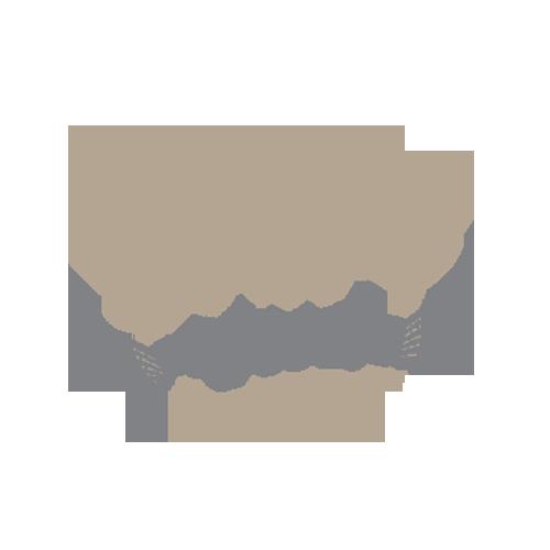 school of cool